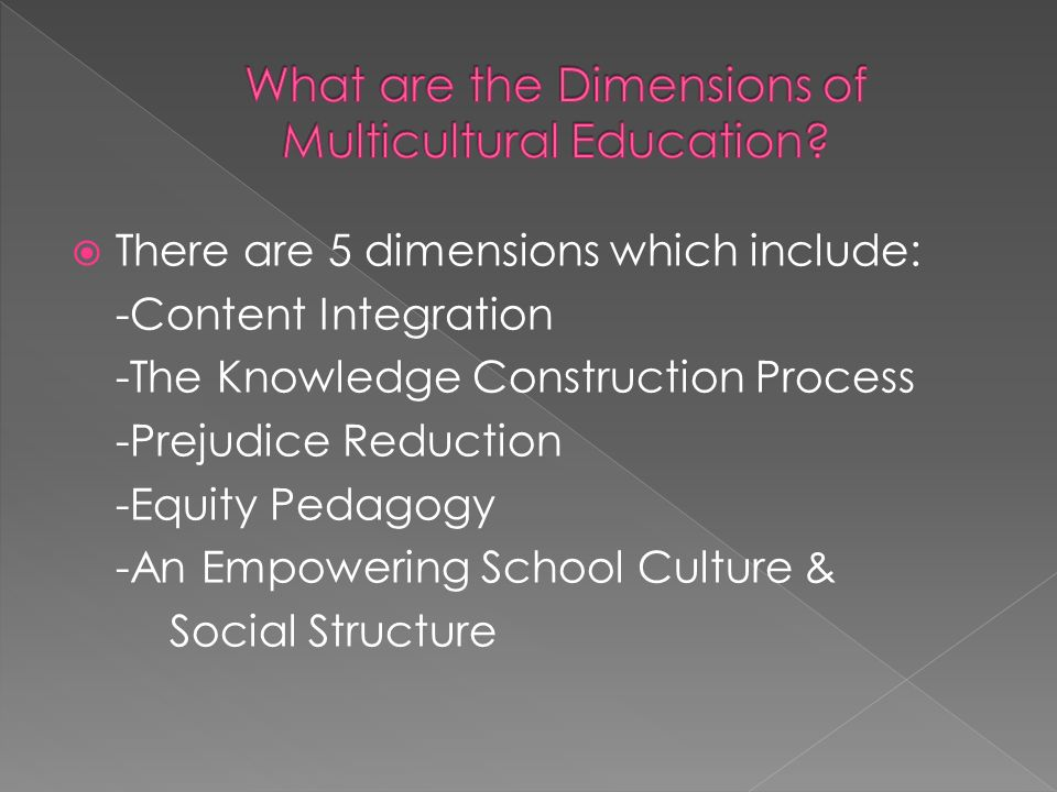  There are 5 dimensions which include: -Content Integration -The Knowledge Construction Process -Prejudice Reduction -Equity Pedagogy -An Empowering School Culture & Social Structure