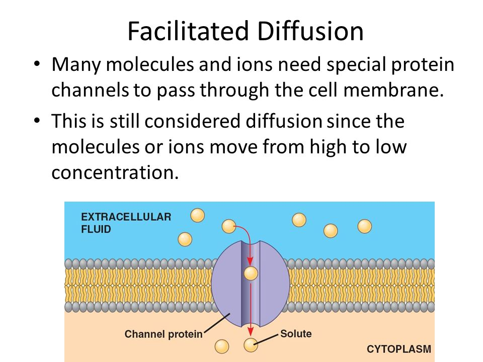 diffusion of molecules Diffusion is the net movement of molecules or atoms from a region of high concentration (or high chemical potential) to a region of low concentration.