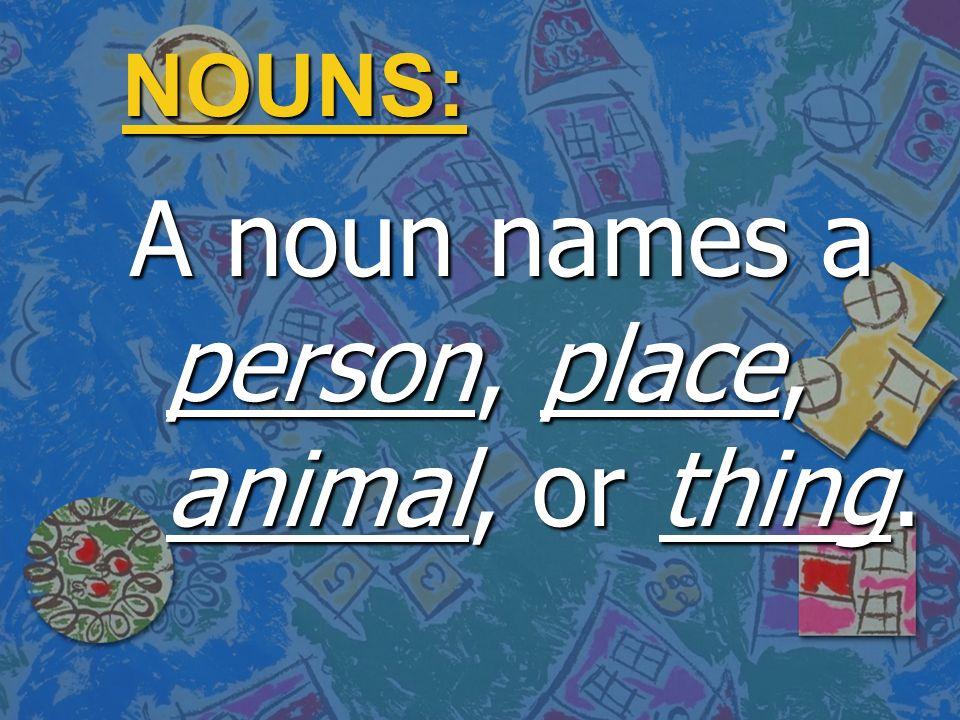 Choose The Correct Noun