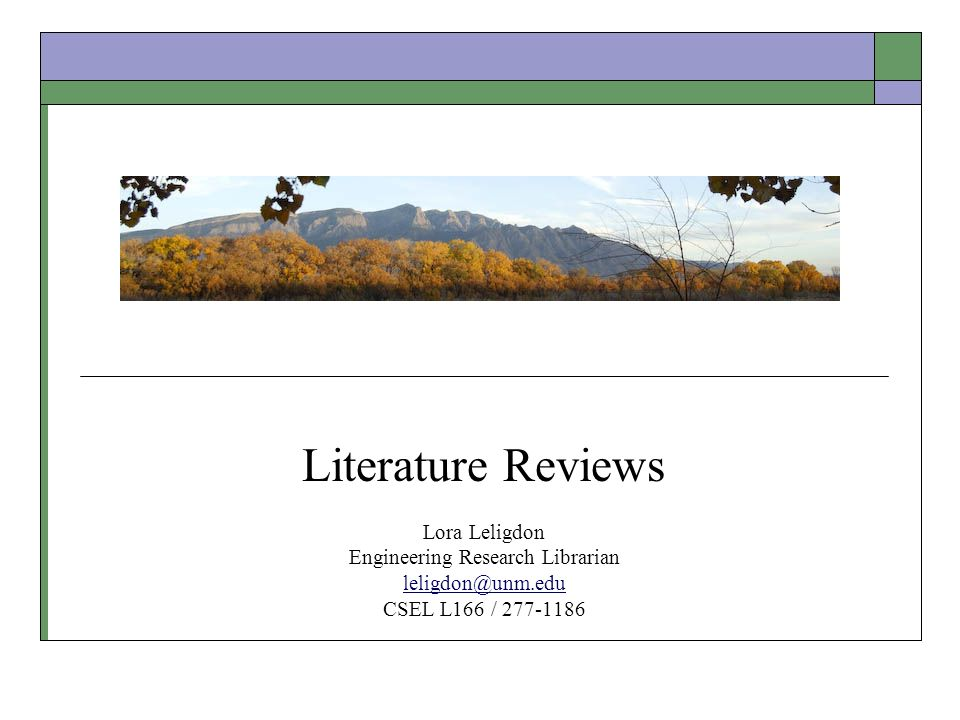 identify the elements found in a scholarly literature review