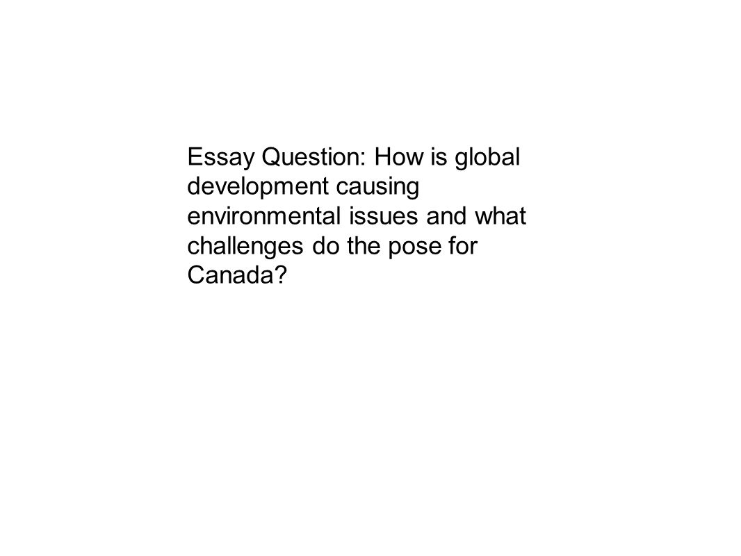 essay about environment environmental issues essay questions essay essay