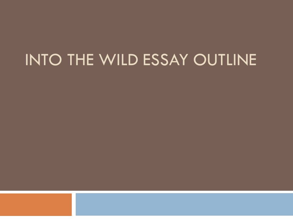 Charmant INTO THE WILD ESSAY OUTLINE
