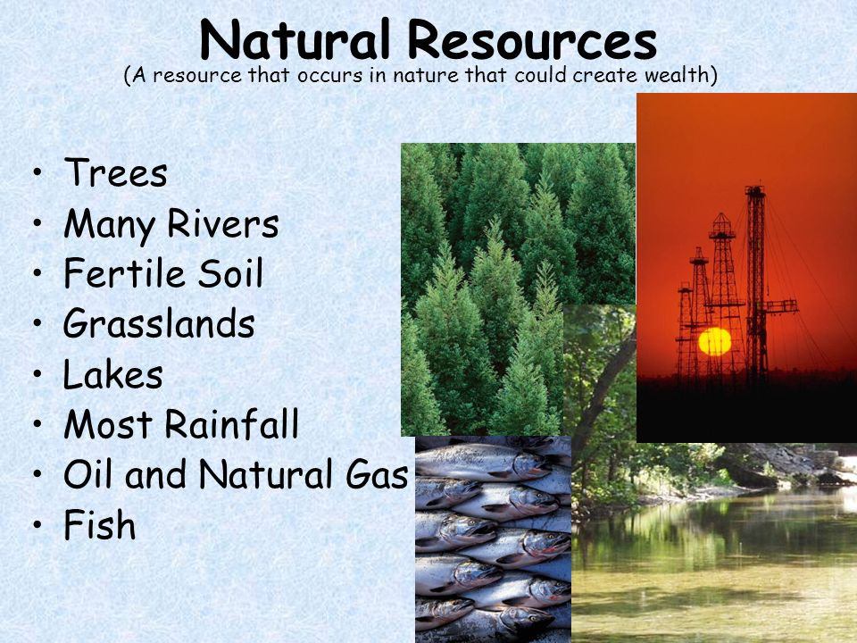 Natural Resources Trees Many Rivers Fertile Soil Grasslands Lakes Most Rainfall Oil and Natural Gas Fish (A resource that occurs in nature that could create wealth)