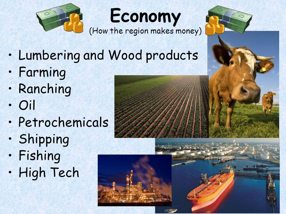 Economy (How the region makes money) Lumbering and Wood products Farming Ranching Oil Petrochemicals Shipping Fishing High Tech