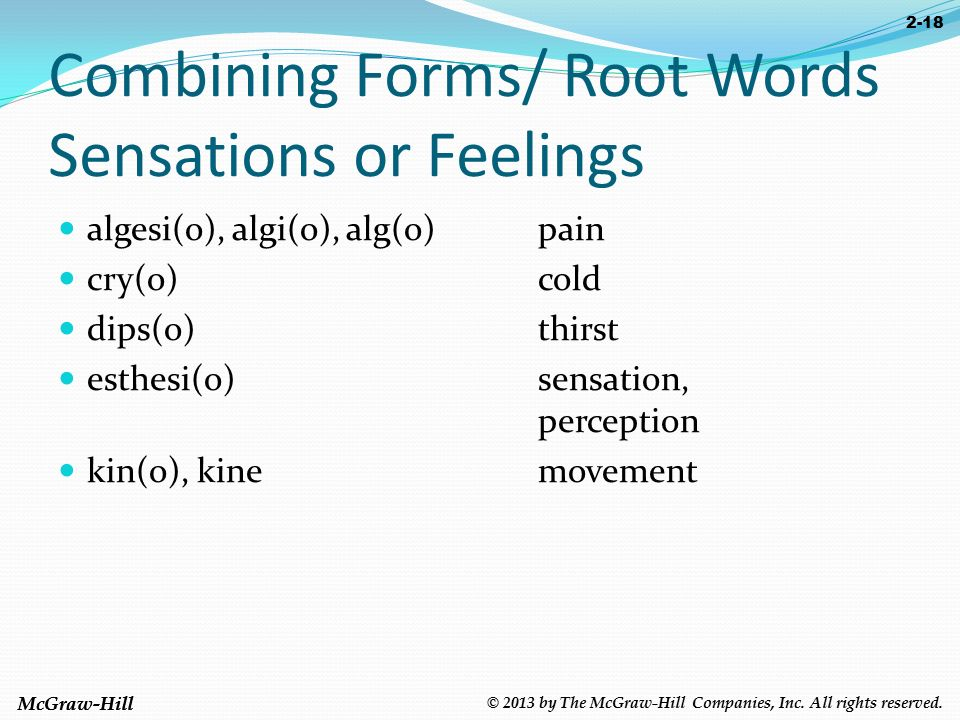 Chapter 2: Word Roots and Combining Forms © 2013 by The McGraw ...