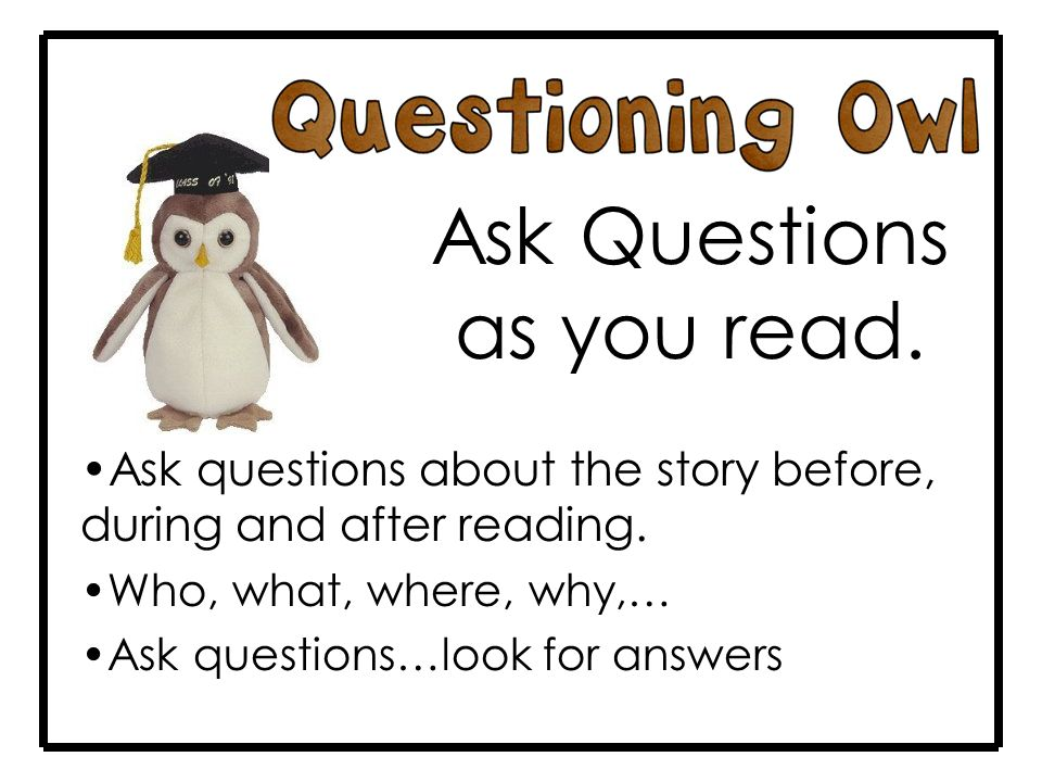 Ask Questions as you read. Ask questions about the story before, during and after reading.