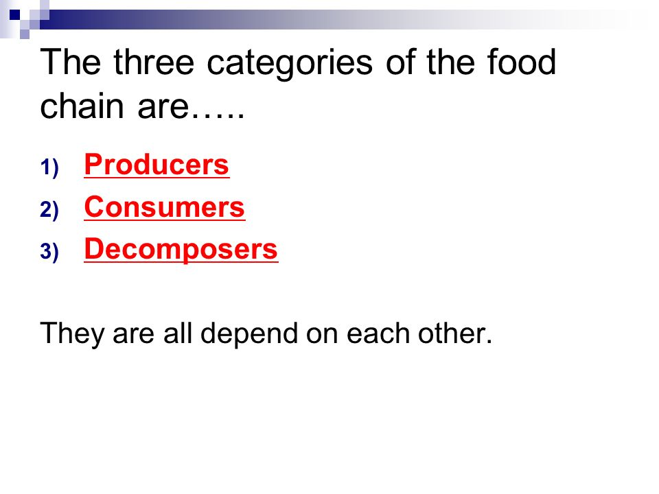 September 23 2015 Objectives I CAN I can classify organisms as – Producer Consumer Decomposer Worksheet