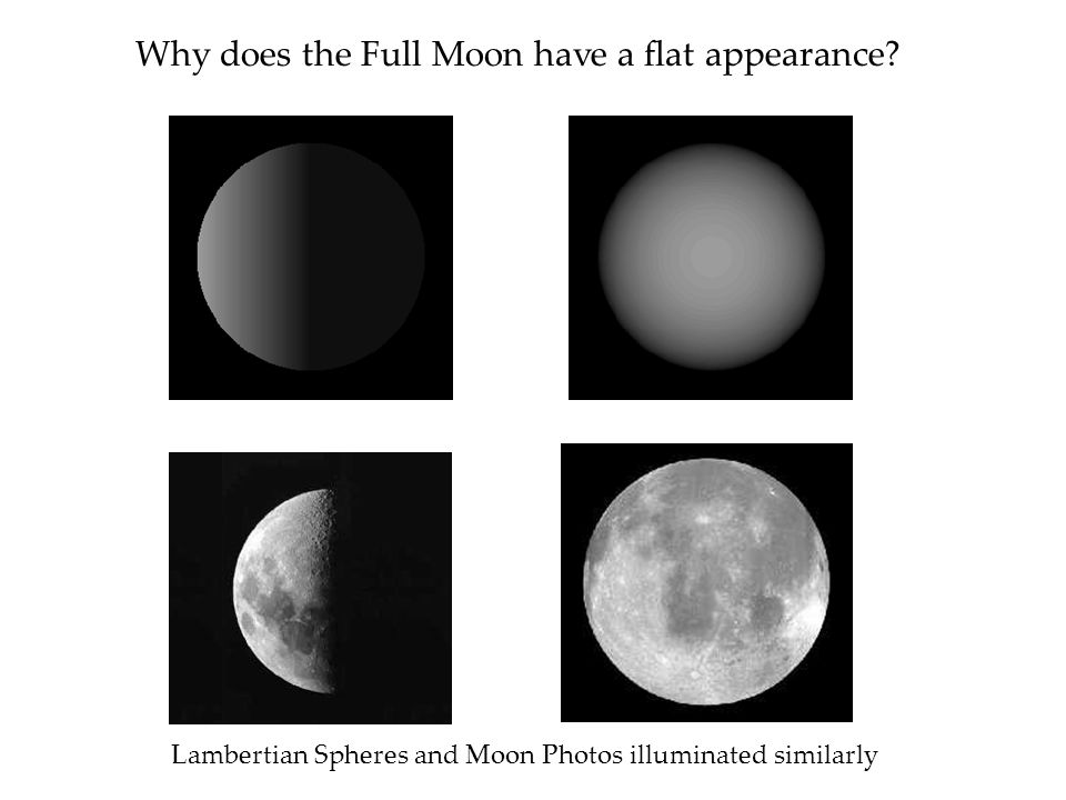 Why does the Full Moon have a flat appearance.