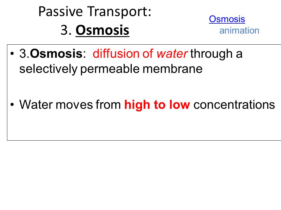 3.Osmosis: diffusion of water through a selectively permeable membrane Water moves from high to low concentrations Osmosis Osmosis animation Passive Transport: 3.