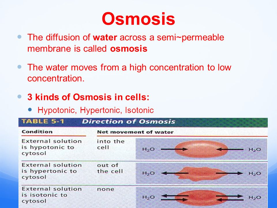 Osmosis The diffusion of water across a semi~permeable membrane is called osmosis The water moves from a high concentration to low concentration.