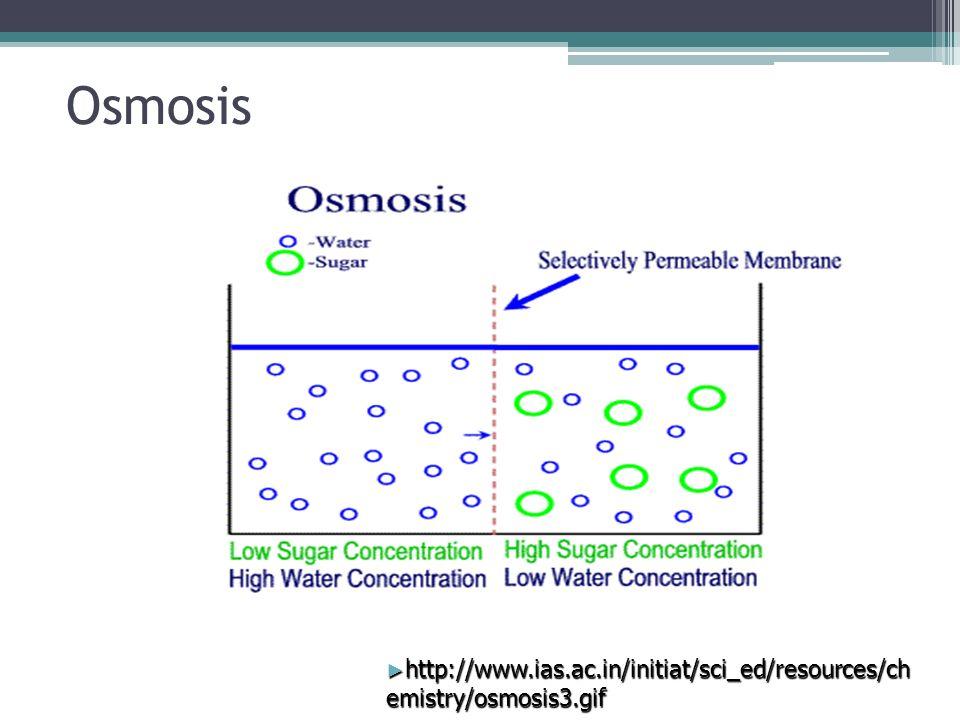 Cellular Transport Passive Transport Movement of molecules across ...