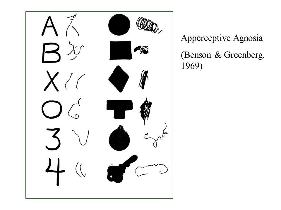 Agnosia and Perceptual Disturbances March 27, ppt download