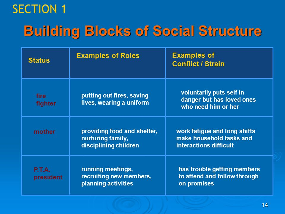14 SECTION 1 Building Blocks of Social Structure Status Examples of Roles Examples of Conflict / Strain fire fighter mother P.T.A.