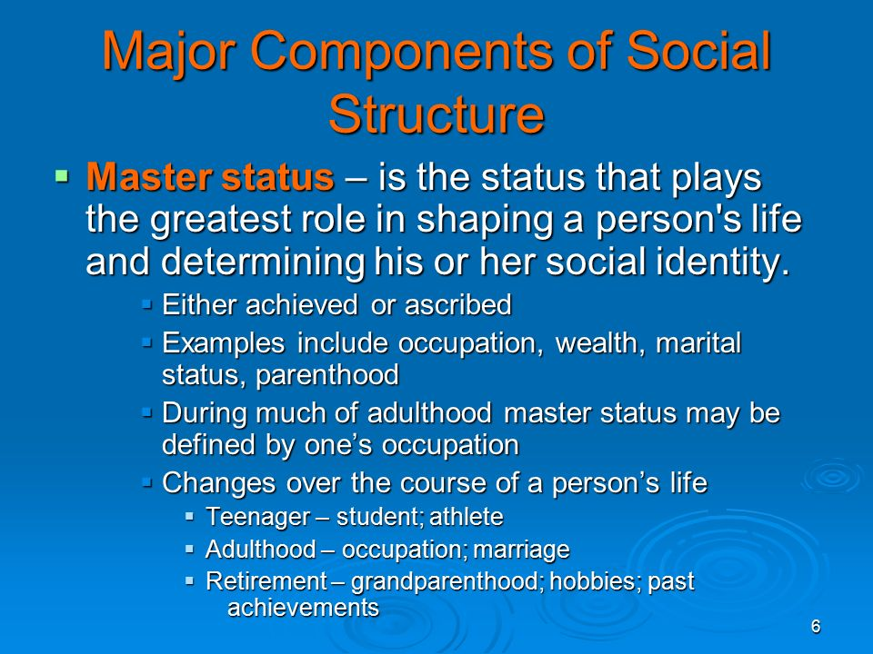 6 Major Components of Social Structure  Master status – is the status that plays the greatest role in shaping a person s life and determining his or her social identity.