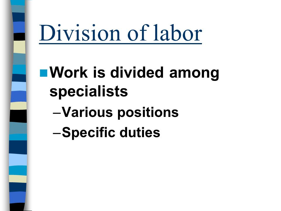 Division of labor Work is divided among specialists –Various positions –Specific duties