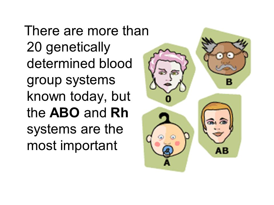 There are more than 20 genetically determined blood group systems known today, but the ABO and Rh systems are the most important