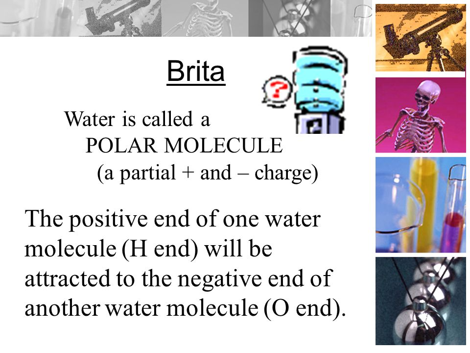 Water Equation for water is H 2 O Is water an organic, or inorganic compound Inorganic (no carbon)