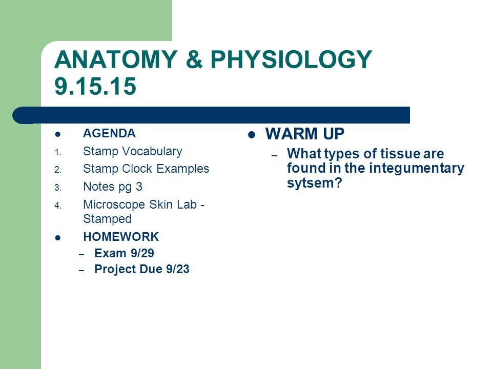 ANATOMY & PHYSIOLOGY AGENDA 1. Complete Column 1&2 on notes page ...