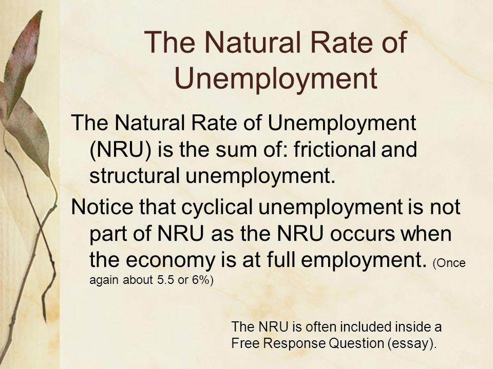 english essay unemployment in pakistan