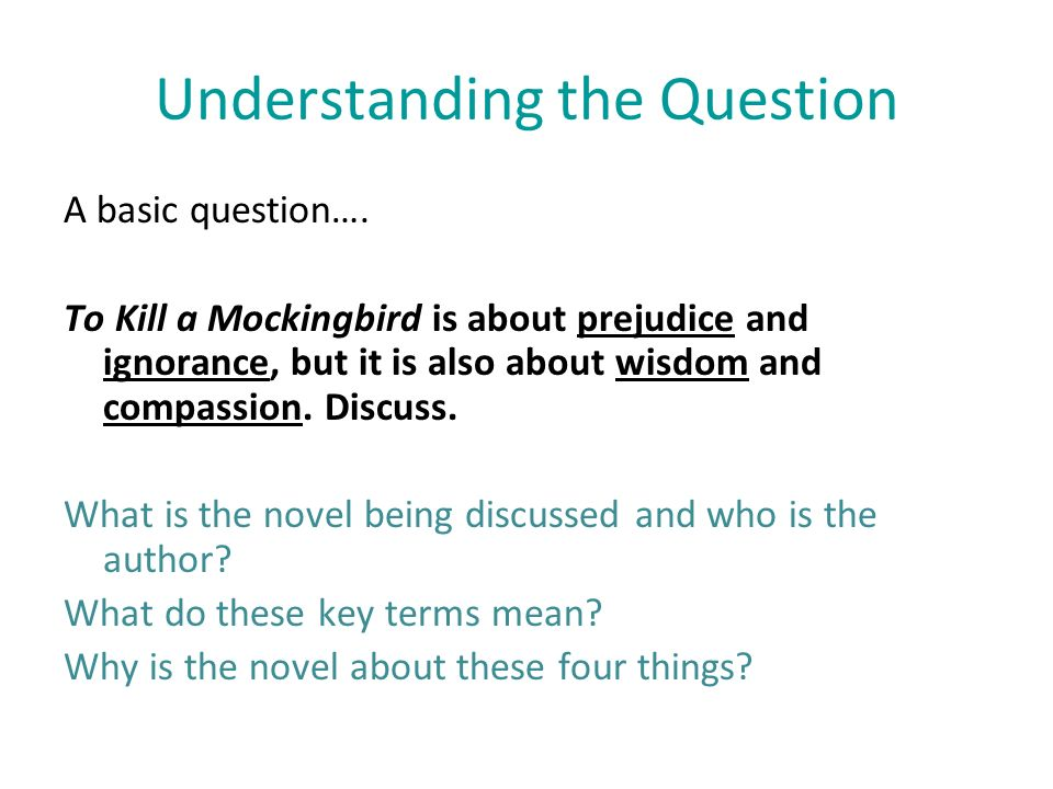 writing great essays using harper lee s to kill a mockingbird  writing great essays using harper lee s to kill a mockingbird 2 understanding