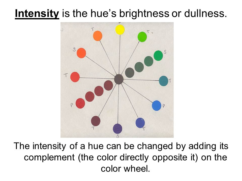 Begin On Page 256 And Define Each Term Color Wheel Primary Colors