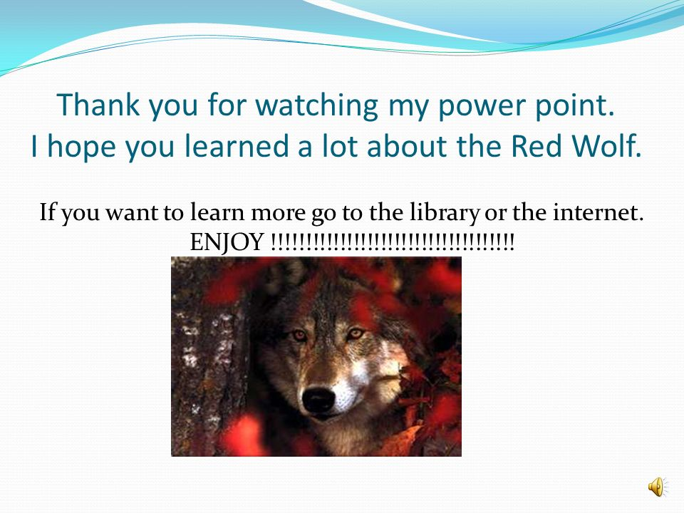 Red Wolf Pictures