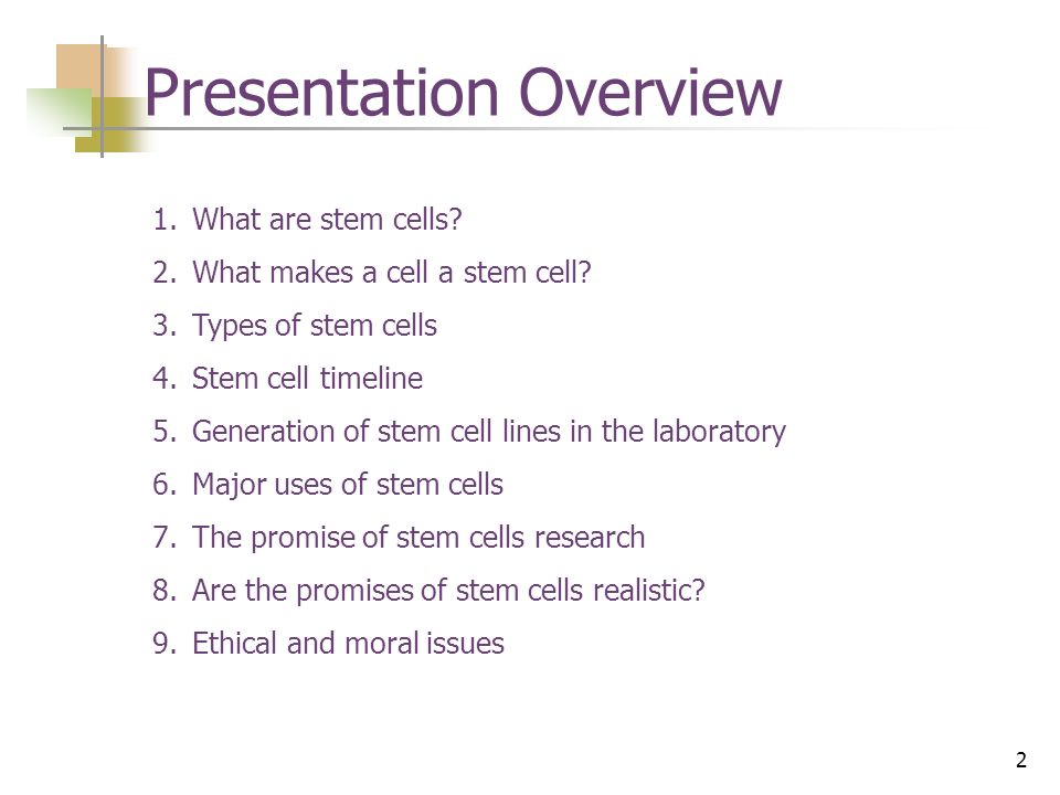 an overview of the moral issues regarding stem cell research