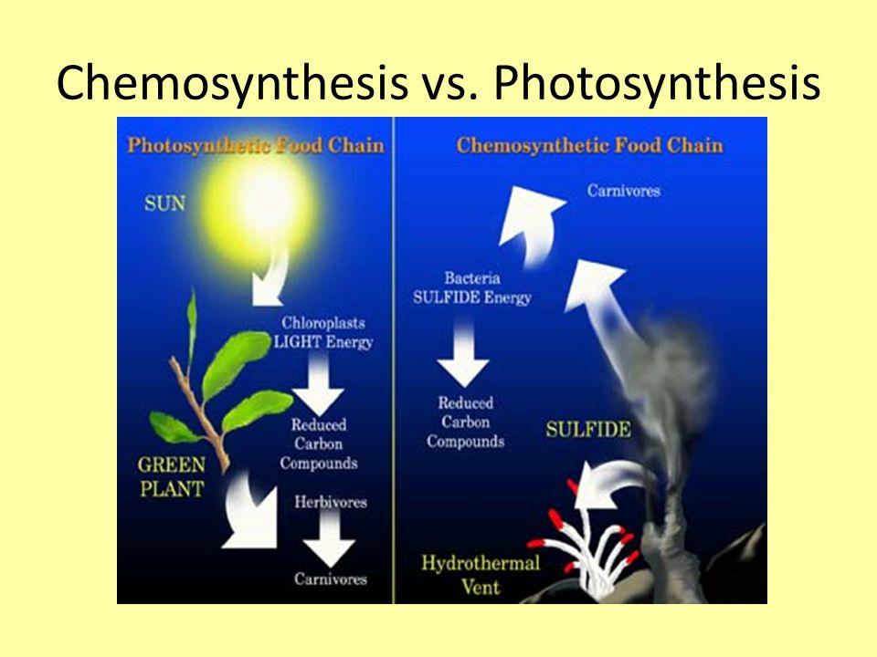 through chemosynthesis