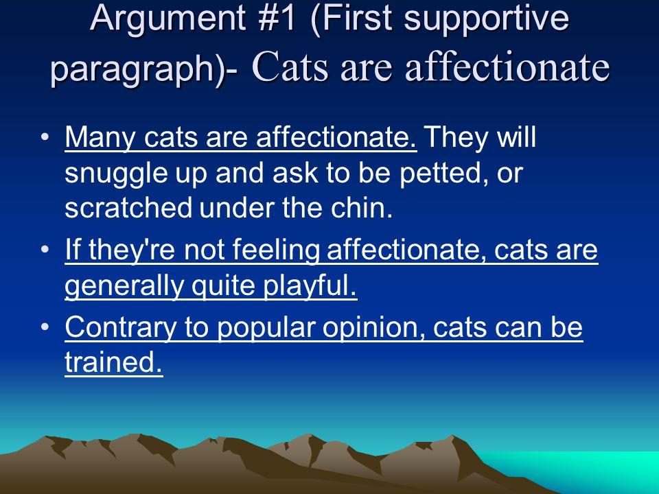 The Cat Essay