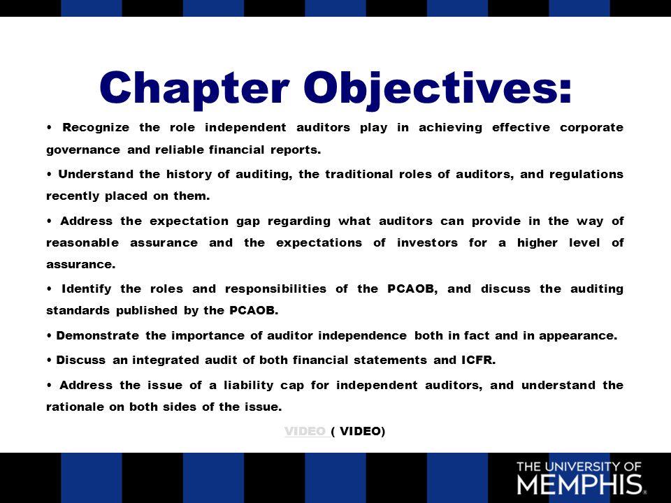 2 external auditors roles and responsibilities chapter ix