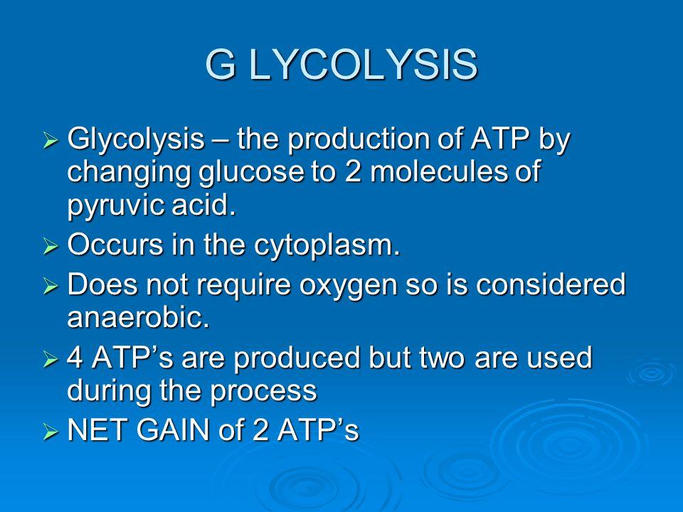 CELLULAR RESPIRATION  Cellular Respiration - The chemical ...