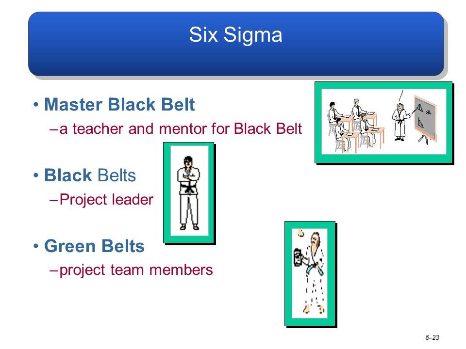 6–23 Six Sigma Master Black Belt –a teacher and mentor for Black Belt Black Belts –Project leader Green Belts –project team members