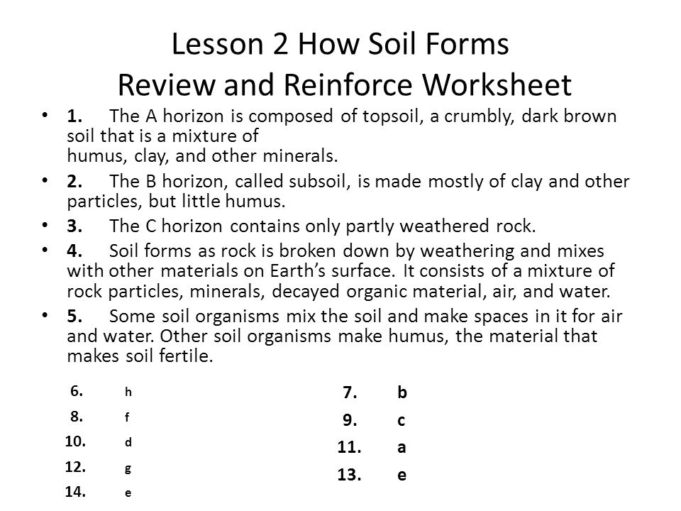 Printables Soil Conservation Worksheet earths surface chapter 2 weathering and soil 1 review lesson how forms reinforce worksheet the a horizon is composed