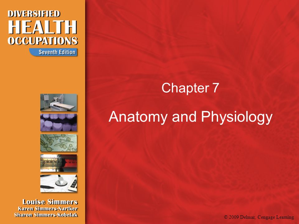2009 Delmar, Cengage Learning Chapter 7 Anatomy and Physiology ...