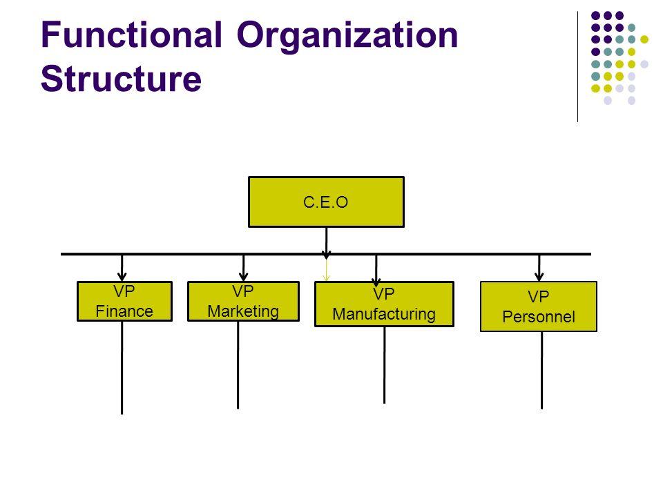 basic organizational structure