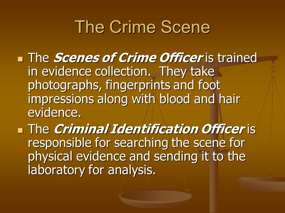 The Crime Scene The Scenes of Crime Officer is trained in evidence collection.