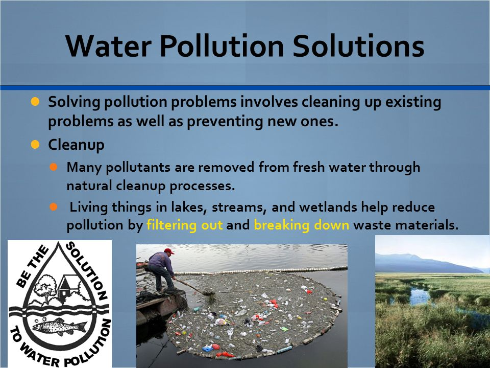 essay on pollutionwater pollution Essays environmental pollution 2006) page 122 water pollution the pollution we dump into our water and to environmental pollution is any discharge of.