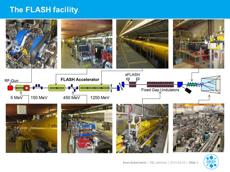Sven Ackermann | FEL seminar | | Slide 3 The FLASH facility.