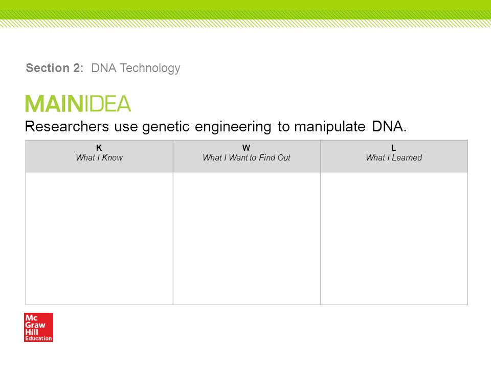 Researchers use genetic engineering to manipulate DNA.