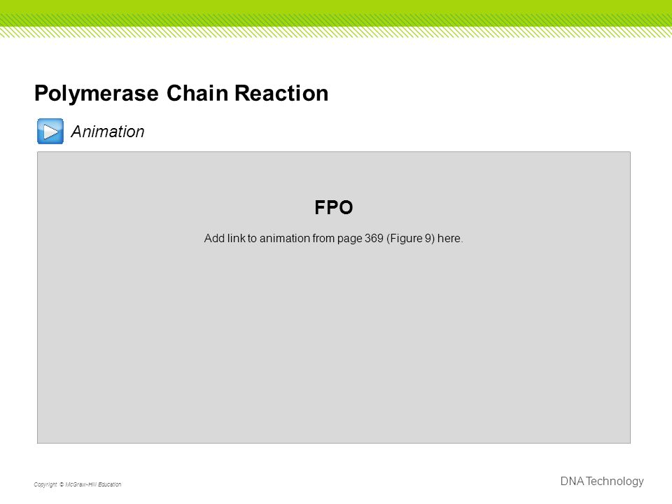 Polymerase Chain Reaction Animation FPO Add link to animation from page 369 (Figure 9) here.