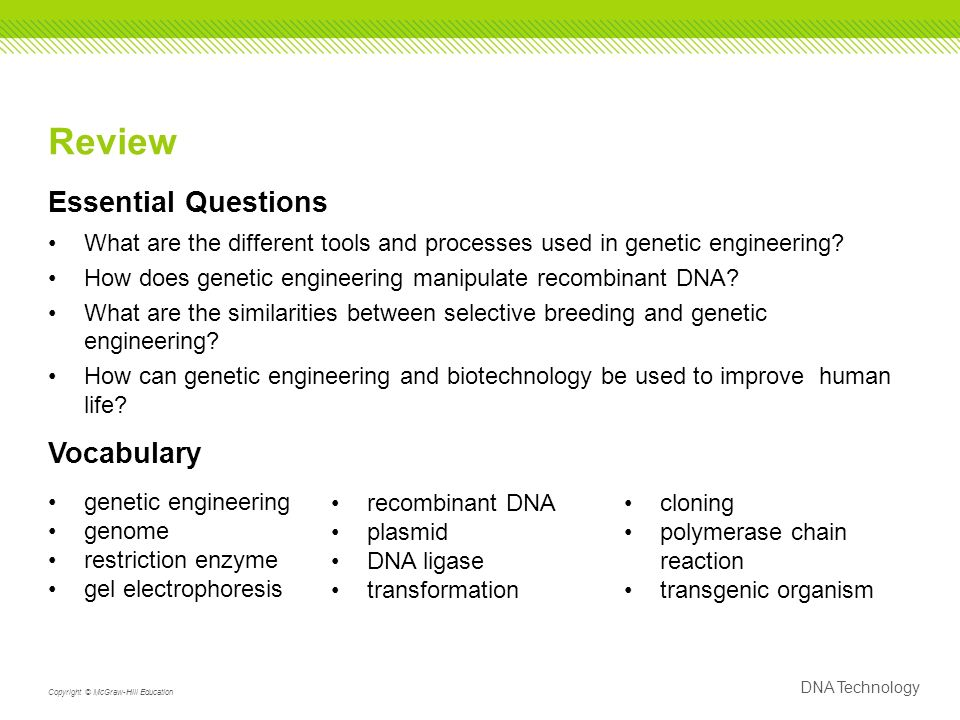 DNA Technology Copyright © McGraw-Hill Education Review Essential Questions What are the different tools and processes used in genetic engineering.