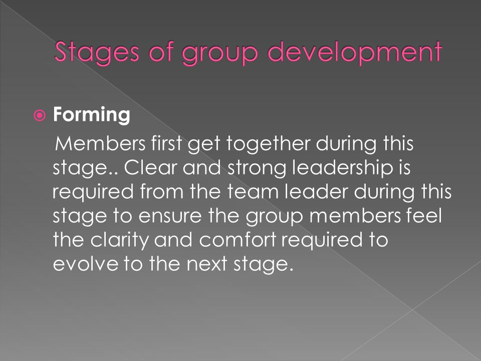  Forming Members first get together during this stage..