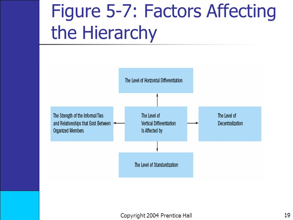 19 Copyright 2004 Prentice Hall Figure 5-7: Factors Affecting the Hierarchy