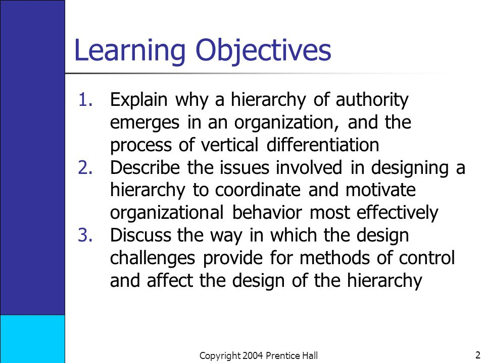 2 Copyright 2004 Prentice Hall Learning Objectives 1.Explain why a hierarchy of authority emerges in an organization, and the process of vertical differentiation 2.Describe the issues involved in designing a hierarchy to coordinate and motivate organizational behavior most effectively 3.Discuss the way in which the design challenges provide for methods of control and affect the design of the hierarchy
