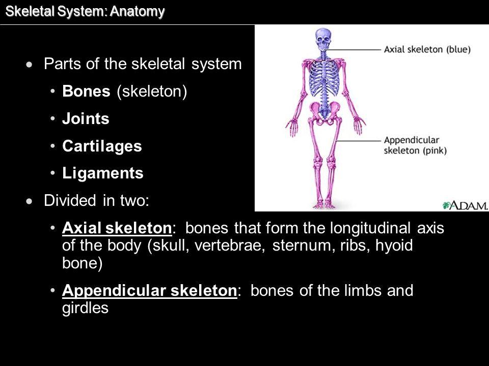 Essentials of Human Anatomy & Physiology, 7 th ed. by Elaine N ...