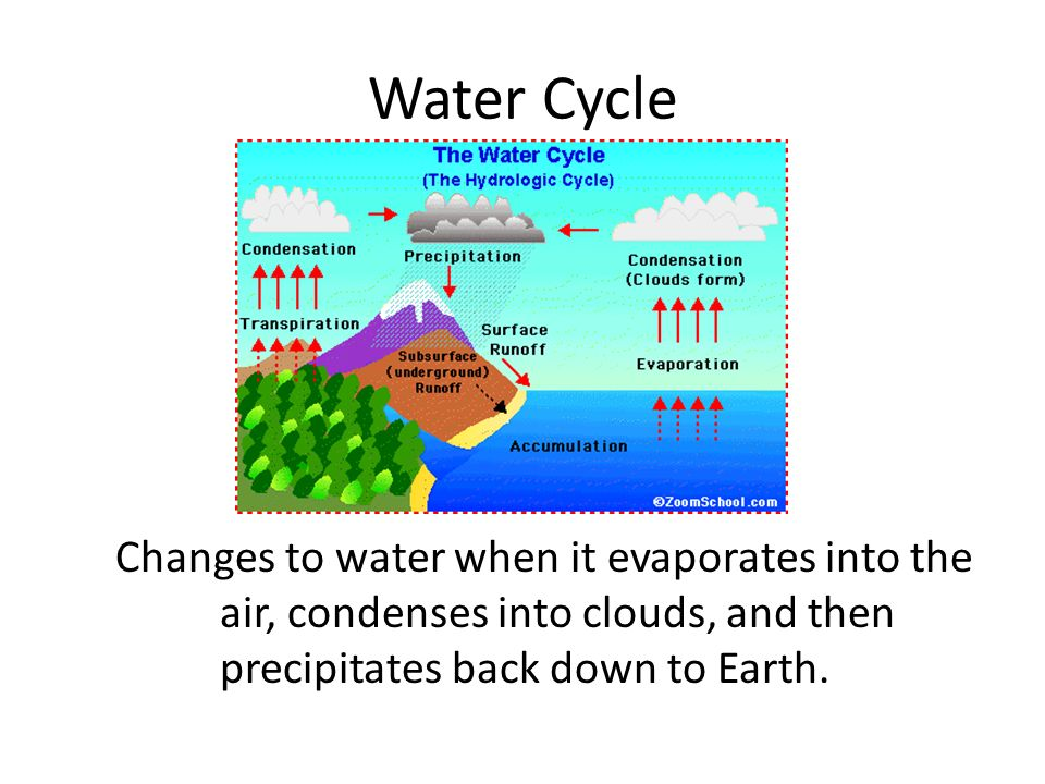 Water Cycle Changes to water when it evaporates into the air, condenses into clouds, and then precipitates back down to Earth.