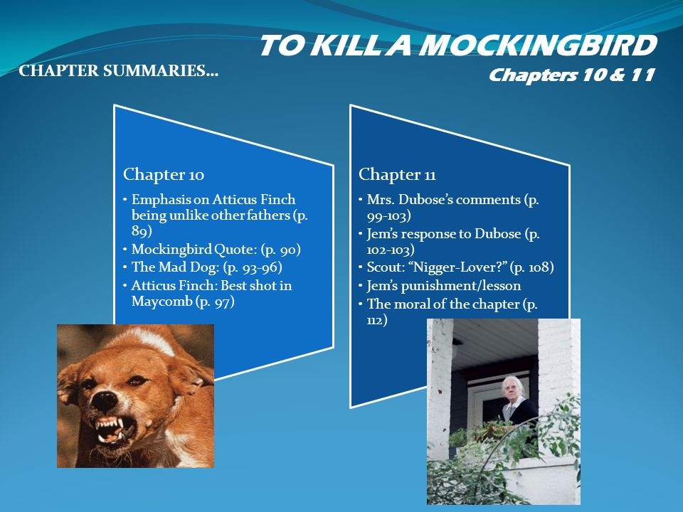 A Good Le For An Essay About Atticus Finch