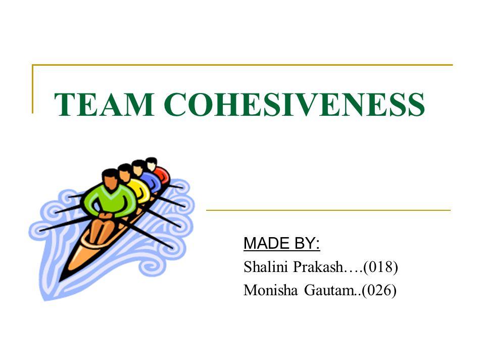 Building Team Cohesion Team Building Plan & Commitment to a Common Goal Role Acceptance Communication Constructive Conflict