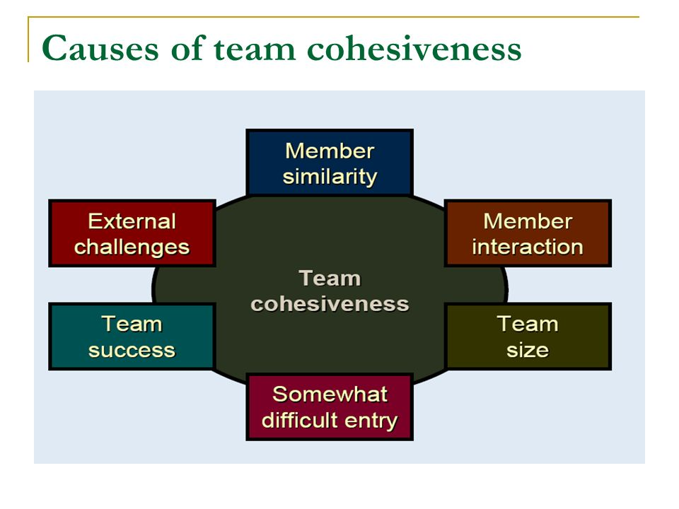 Key Environmental Factors Normative factors hold groups together Contractual responsibilities Organization factors Size of the team Distinctiveness from others