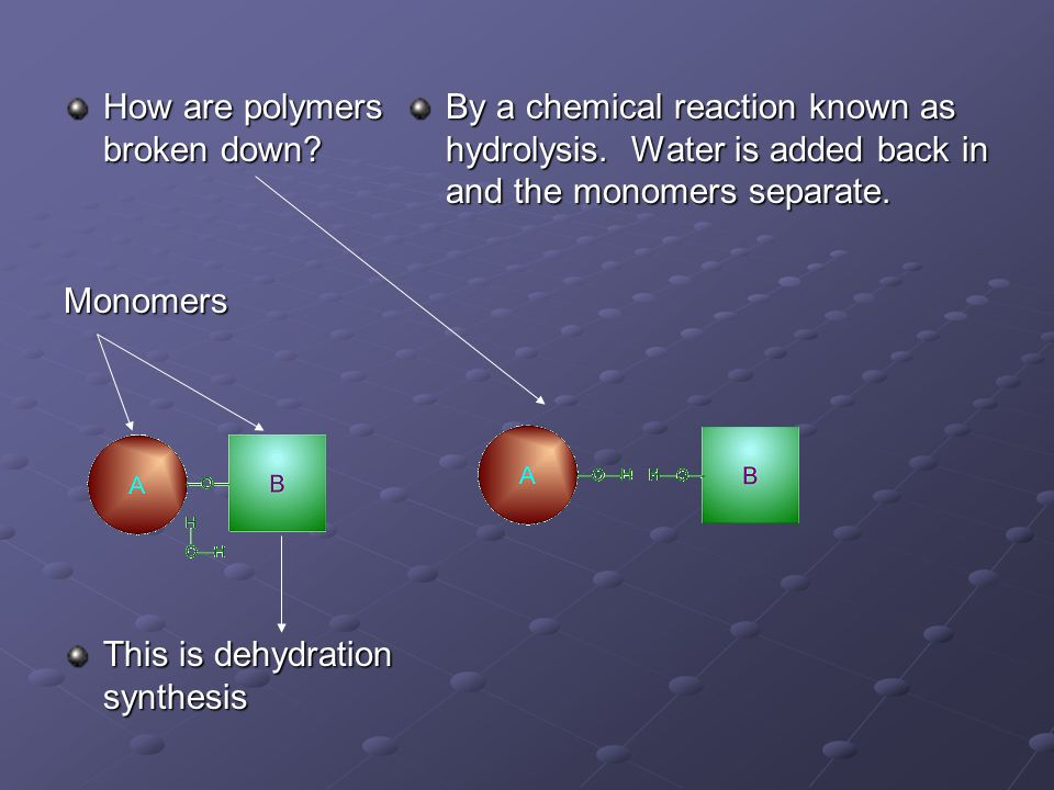 How are polymers broken down.